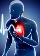 sudden, cardiac, death, hearth, sport, athlete, scd