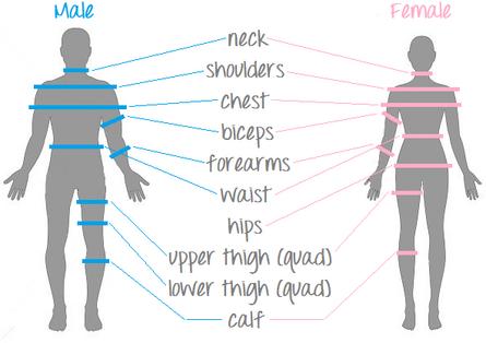 body, measurment, fat, caliper