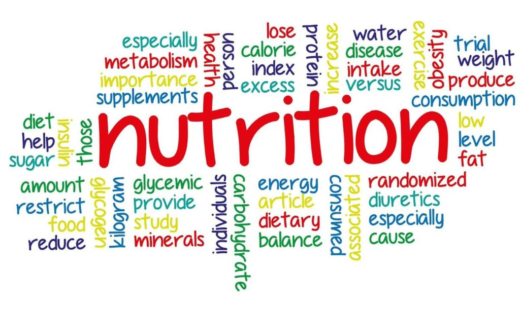 nutrition, food, energy, diet, metabolism, nutrient, calorie,