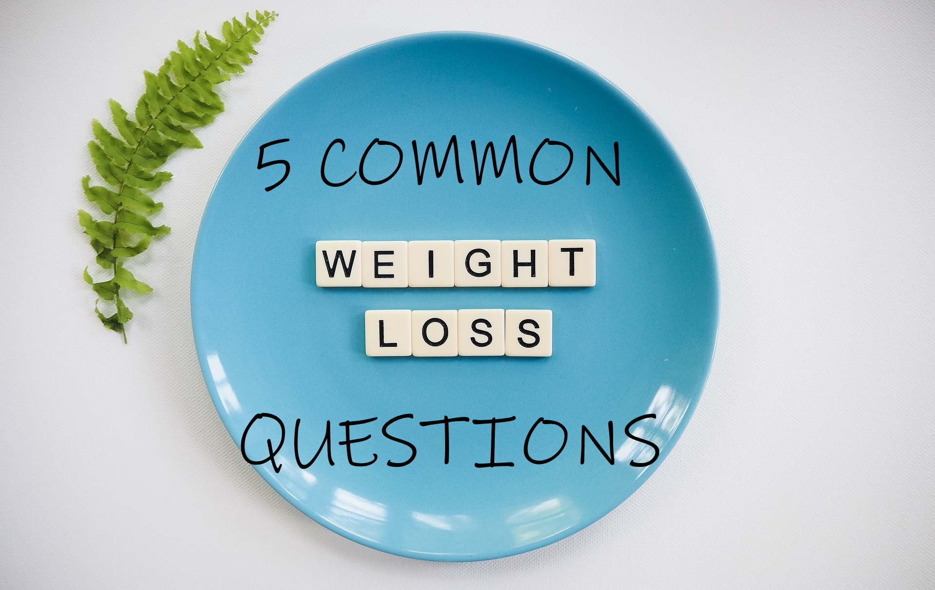 plate common weight loss questions