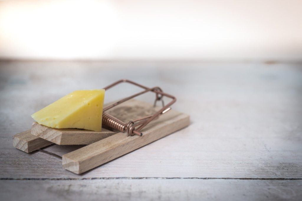 trap mouse cheese protect your willpower from self-sabotage